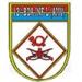 12ª BDA  Brigada Infantaria Leve - Aeromóvel