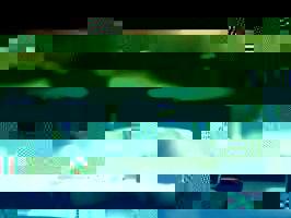 Tim Maia - O Filme