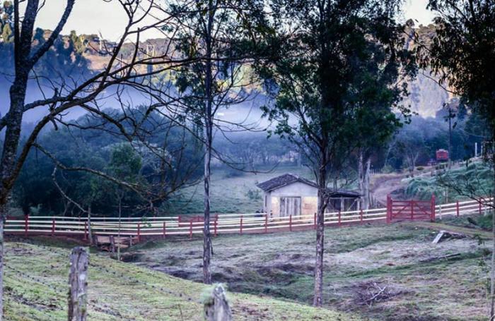 Manhã fria em Maria da Fé (Sul de Minas) na Serra da Mantiqueira