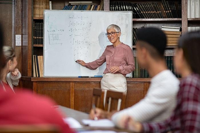Trabalhar na educação superior: os desafios do professor universitário na educação de qualidade