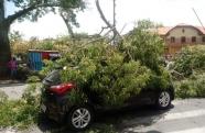 Árvore cai sobre carro no centro de Pindamonhangaba