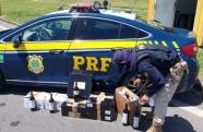 Polícia Rodoviária Federal apreende carregamento de vinho contrabandeado na Dutra