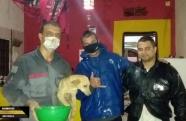 Bombeiros salvam cachorro em São Sebastião
