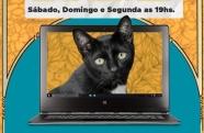 Sequência de eventos on-line anuncia contagem regressiva para a seleção oficial do Cinefest Gato Preto