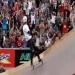 Total Radical (Esporte Vida) Skate,Motocroos,Incredible performance car,BMX